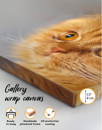 Red Persian Cat Canvas Wall Art - image 6