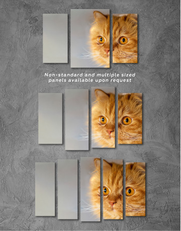 Red Persian Cat Canvas Wall Art - image 3