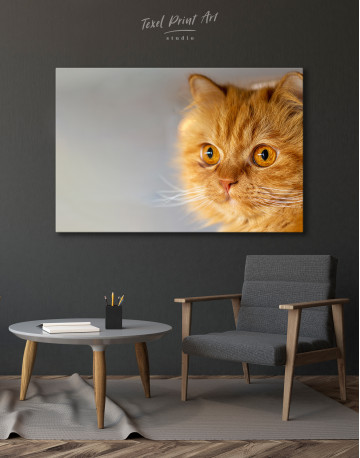 Red Persian Cat Canvas Wall Art - image 2