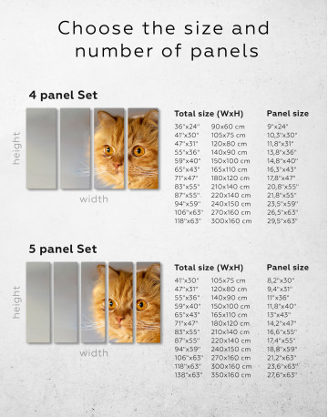 Red Persian Cat Canvas Wall Art - image 10