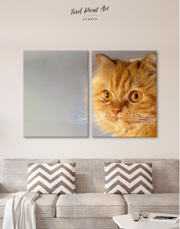 Red Persian Cat Canvas Wall Art - image 8