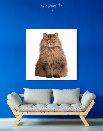 Surprised Persian Cat Canvas Wall Art - image 4
