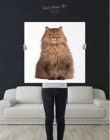 Surprised Persian Cat Canvas Wall Art - image 6
