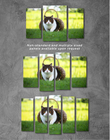 British Shorthair Cat on the Grass Canvas Wall Art - image 5