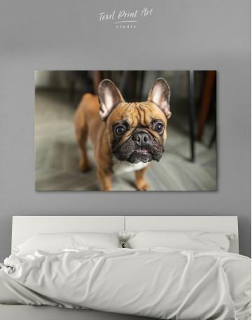 French Bulldog Photography Canvas Wall Art