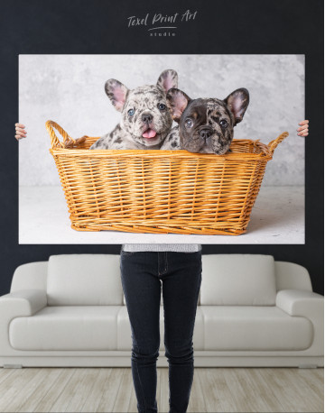 French Bulldog Puppies in Basket Canvas Wall Art - image 10