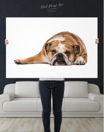 French Bulldog Lying on the Floor Canvas Wall Art - image 9