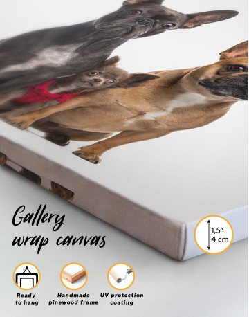 Puppy Chihuahua and French Bulldogs Canvas Wall Art - image 8