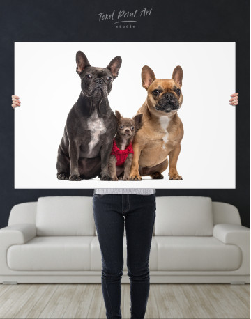 Puppy Chihuahua and French Bulldogs Canvas Wall Art - image 9