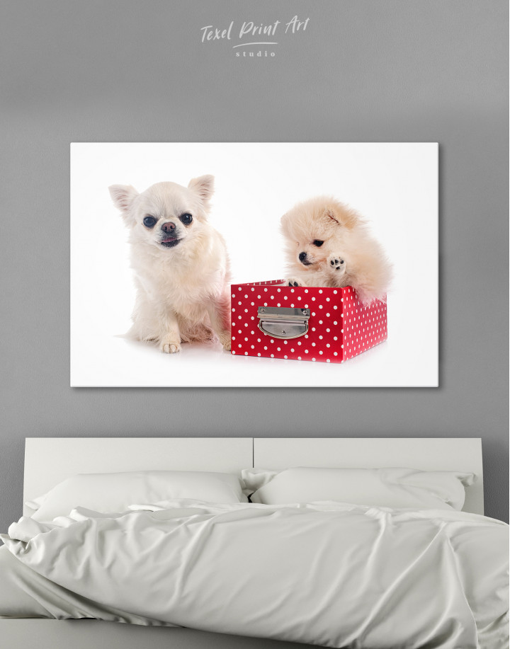 Cute Pomeranian and Chihuahua Canvas Wall Art