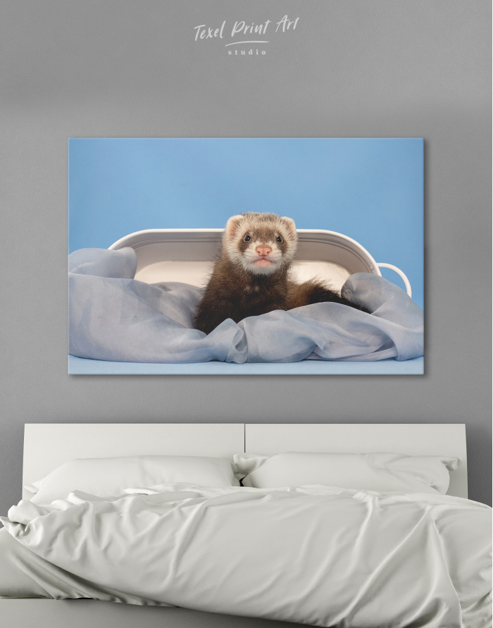 Lazy Ferret in Bed Canvas Wall Art