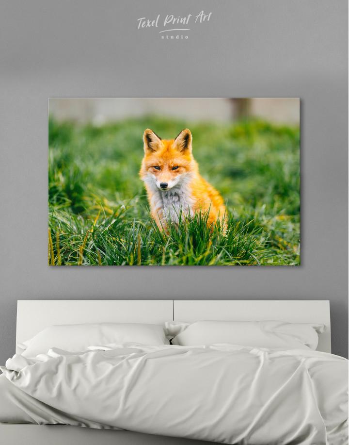 Lovely Fox in Grass Canvas Wall Art