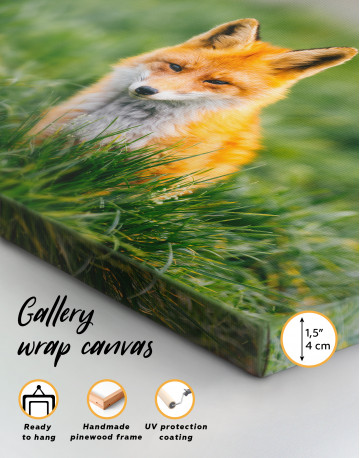 Lovely Fox in Grass Canvas Wall Art - image 8