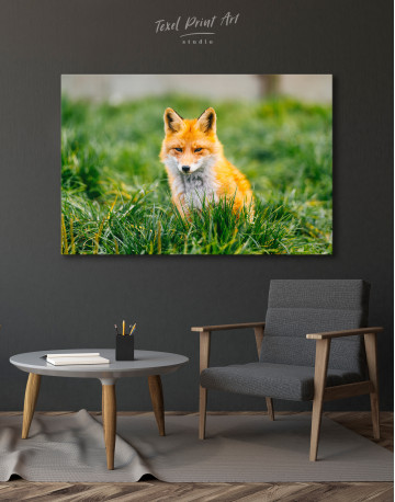 Lovely Fox in Grass Canvas Wall Art - image 6