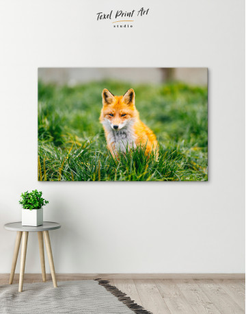 Lovely Fox in Grass Canvas Wall Art - image 5