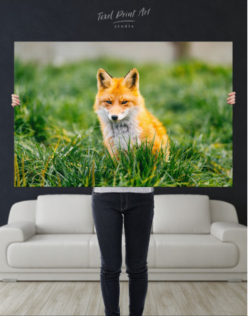 Lovely Fox in Grass Canvas Wall Art - image 9