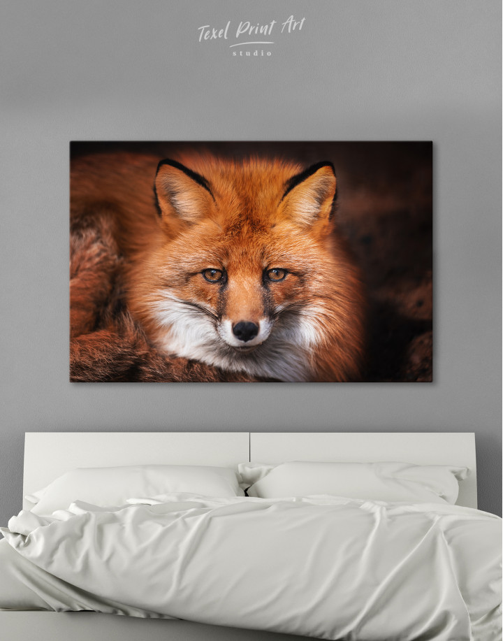 Red Fox Close Up Canvas Wall Art