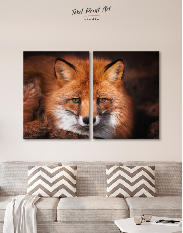 Red Fox Close Up Canvas Wall Art - image 10