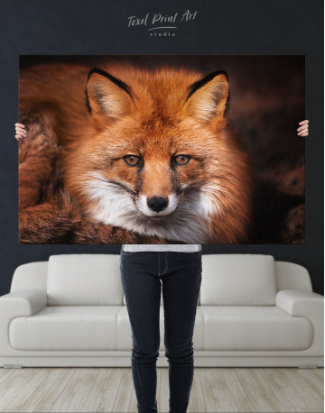 Red Fox Close Up Canvas Wall Art - image 9