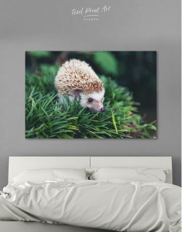 Hedgehog on Green Forest Canvas Wall Art