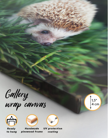 Hedgehog on Green Forest Canvas Wall Art - image 8