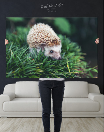 Hedgehog on Green Forest Canvas Wall Art - image 9