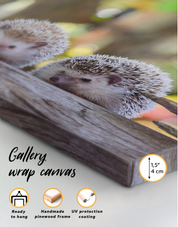 Couple of Two Hedgehogs on Tree Canvas Wall Art - image 8