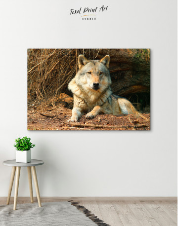 Wild Gray Wolf Canvas Wall Art - image 6