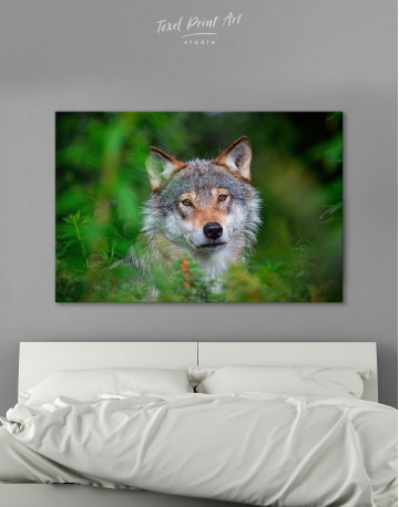 Wolves Glance Canvas Wall Art