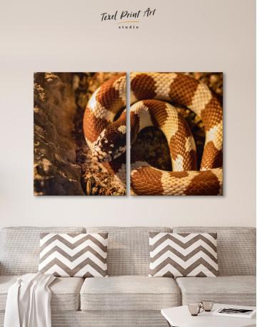 Arizona Mountain Kingsnake Canvas Wall Art - image 10