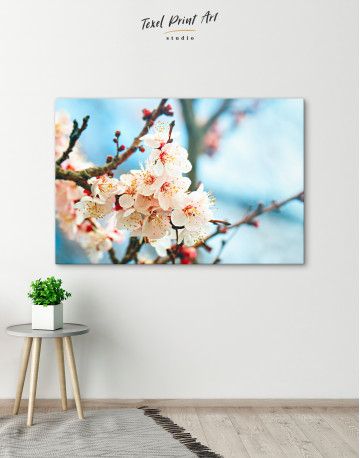 Apricot Blossom in Spring Canvas Wall Art - image 9