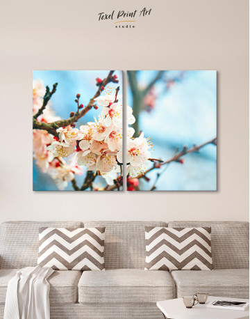 Apricot Blossom in Spring Canvas Wall Art - image 1