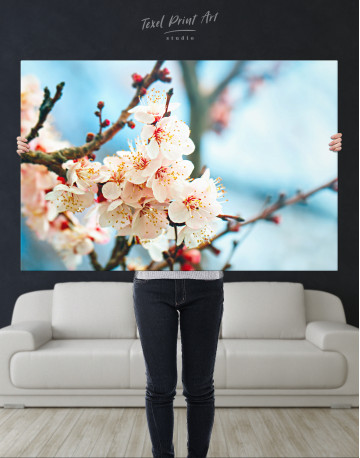 Apricot Blossom in Spring Canvas Wall Art - image 2